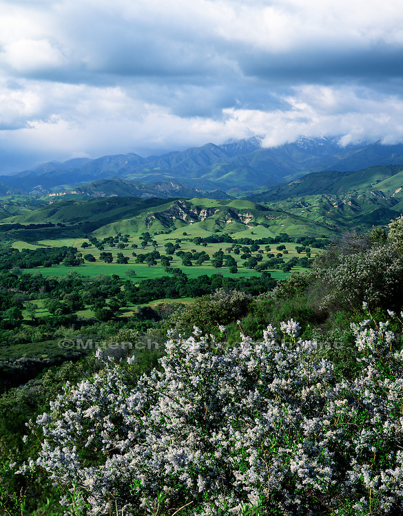 Santa Ynez Valley   CALIFORNIA, San Rafael Mountains