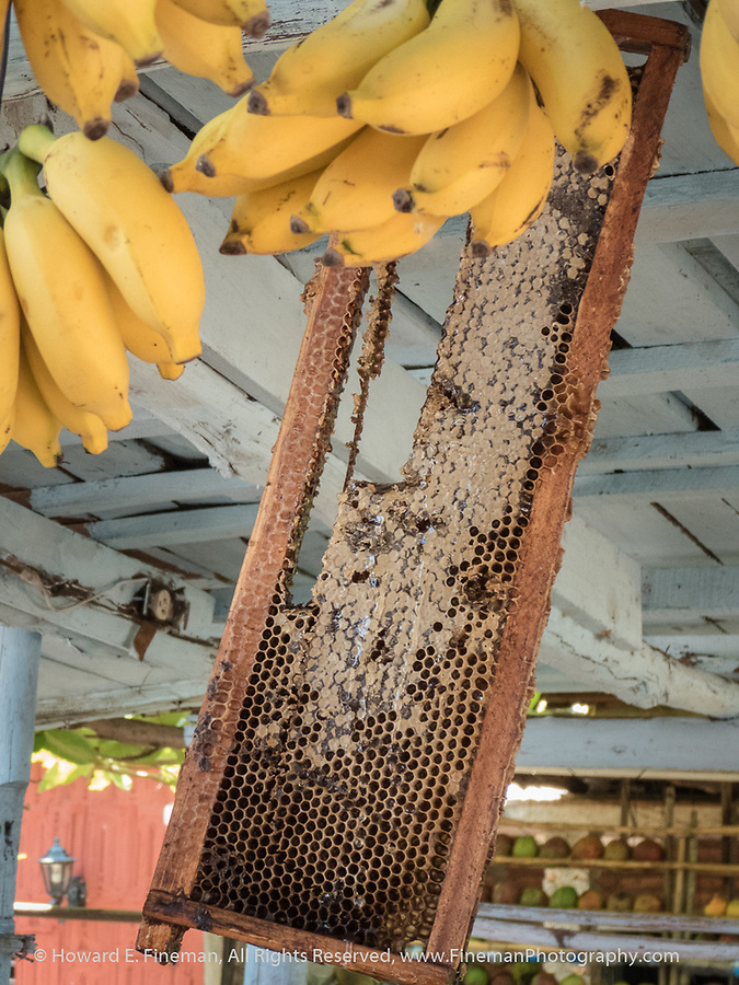 Honey and bananas at roadside stand - as incredibly delicious as the mangoes