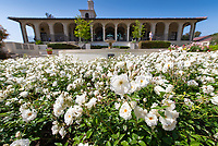 Roses, JSC, little fountain and Academic Quad on May 3, 2019.<br /> (Photo by Marc Campos, Occidental College Photographer)