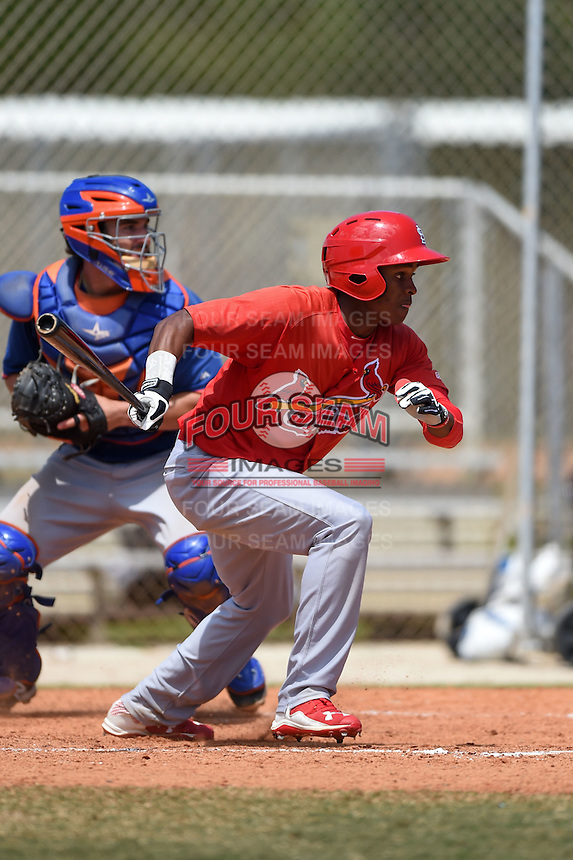 St. Louis Cardinals Magneuris Sierra (7) during a minor league spring training game against the New York Mets on April 1, 2015 at the Roger Dean Complex in Jupiter, Florida.  (Mike Janes/Four Seam Images)