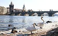 MAR 2 Prague - Charles Bridge