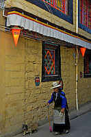 The great architecture of Lhasa, near Barkhor street, an old women taking her little dog for a walk