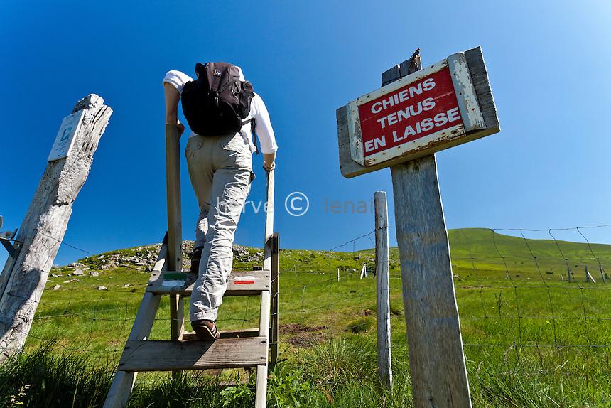 France, Puy-de-Dôme (63), Parc naturel régional des volcans d'Auvergne, massif du Sancy, passage d'enclos sur un sentier de randonnée depuis le col de la Croix-Saint-Robert // France, Puy de Dome, Parc Naturel Regional des Volcans d'Auvergne (Auvergne Volcanoes Natural Regional Park), Massif of Sancy, hiking trail since pass of Croix St. Robert
