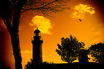 A light house with seagull