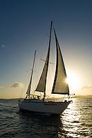 "Sailing vessel ""Dream Weaver"""