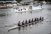 Henley Royal Regatta, Henley on Thames, Oxfordshire, 28 June - 2 July 2017.  Wednesday  19:18:10   28/06/2017  [Mandatory Credit/Intersport Images]<br /> <br /> Rowing, Henley Reach, Henley Royal Regatta.<br /> <br /> The Temple Challenge Cup<br />  University of California, Berkeley, U.S.A.
