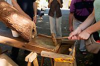 Festival de la langue occitane (une année sur deux) autour de la langue, des jeux et de la musique, place de la Grande Rigaudi<br /> Casser de noix à la volée