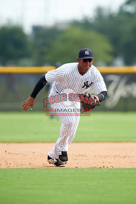 GCL Yankees East third baseman Lisandro Blanco (14) during the first game of a doubleheader against the GCL Yankees West on July 19, 2017 at the Yankees Minor League Complex in Tampa, Florida.  GCL Yankees West defeated the GCL Yankees East 11-2.  (Mike Janes/Four Seam Images)