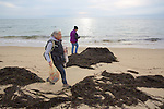 Geneviève Martin & Judith Rhome, Looking For Stranded Sea Turtles On Beach Survey