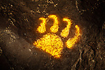Cougar Pawprint Petroglyph, Three Rivers Petroglyph Site, New Mexico