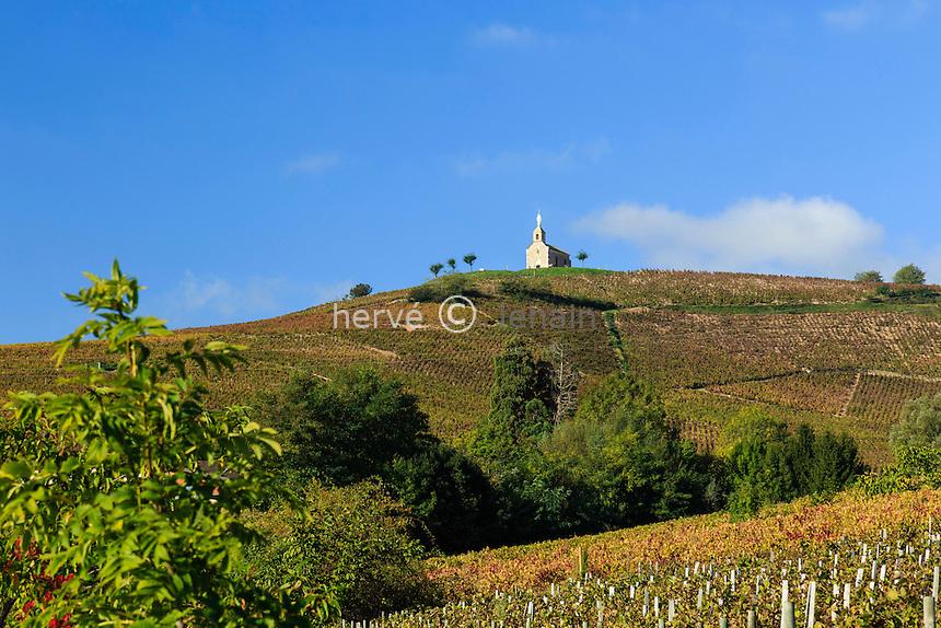 France, Rhône (69), région du Beaujolais, Fleurie, la chapelle de la Madone et le vignoble en automne // France, Rhone, Beaujolais region, Fleurie, Chapel of the Madonna and the vineyards in autumn