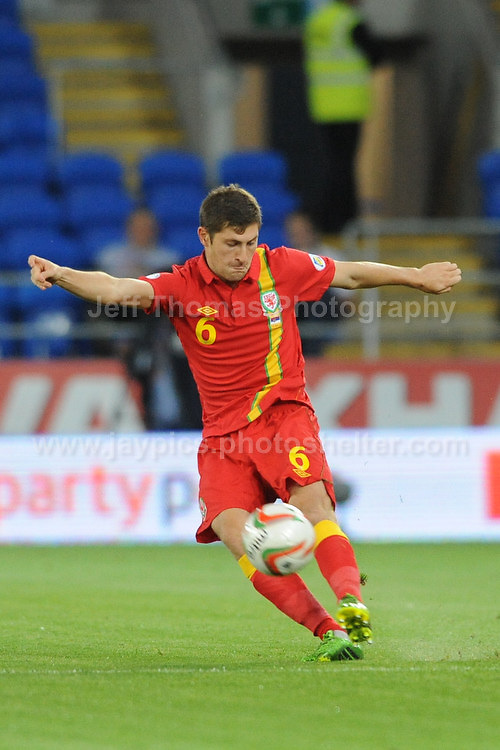 Ben Davies of Wales in action during the Wales v Serbia FIFA World Cup 2014 Qualifier match at Cardiff City Stadium, Cardiff, Wales -Tuesday 10th Sept 2014. All images are the copyright of Jeff Thomas Photography-07837 386244-www.jaypics.photoshelter.com