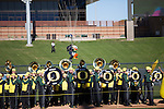 University of Oregon's matching band play while the duck decends durig the school's Feista Bowl pep rally. ..Tribune Photo: Meg Williams..1-2-13, DUCKS, U OF O, Fiesta bowl, pep rally, Tostitos Fiesta Bowl, University of Oregon, Phoenix, Saltwater Fields