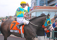 Next Question (no. 7), ridden by Ramon Dominguez and trained by Michael Trombetta, wins the grade 1 Nearctic Stakes for three year olds and upward on October 14, 2012 at Woodbine Racetrack in Rexdale, Ontario, Canada.  (Bob Mayberger/Eclipse Sportswire)