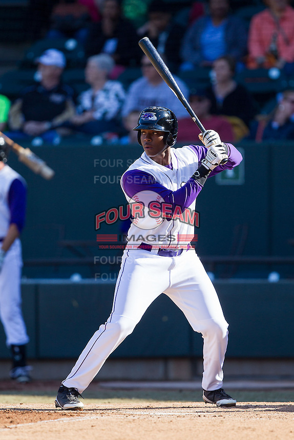 Keon Barnum (20) of the Winston-Salem Dash at bat against the Salem Red Sox at BB&T Ballpark on April 20, 2014 in Winston-Salem, North Carolina.  The Dash defeated the Red Sox 10-8.  (Brian Westerholt/Four Seam Images)