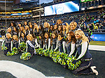 Seattle Seahawks  dance team, the Seagals ,have their team picture taken after the Seahawks game against the St. Louis Rams at CenturyLink Field in Seattle, Washington on December 28, 2014.  The Seahawks officially wrapped up the No. 1 seed in the NFC playoffs shortly after beating the Rams, 20-6. Despite the Cowboys and Packers also winning to finish 12-4, the Seahawks (12-4) won the multi-team tiebreaker and earned home-field advantage throughout the playoffs for the second consecutive season.  ©2014. Jim Bryant Photo. All Rights Reserved.