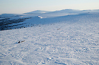 Sebastian Schnuelle leads John Baker on the trail in the hills between Elim and Golovin on Tuesday evening with the Bering Sea in the background   Iditarod 2009