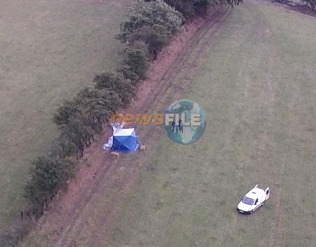 Body recovered outside Collon Co Louth<br /> Picture: www.newsfile.ie