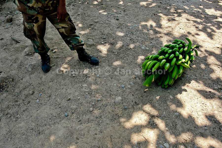 A soldier standing next a banana bunch on the banana plantation in Aracataca, Colombia, 14 March 2006. Some of the three big companies used do hire paramilitary groups to protect their interests. These paramilitary forces are fundamentally involved in the Colombian armed conflict. Eighty percent of the exported bananas in the world are grown in Latin America. Local farms have no other alternative than to sell for a price offered by the multinational company. When working conditions and ecology is in question, the corporations do not have any responsibility as they do not own plantations. Local governments in the attempt of organizing banana export provide low duty taxes on export, they try to eliminate social and enviromental politics to attract the big companies to their countries.