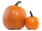 Large and a small pumpkin isolated on white background