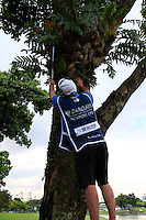 Michael Hoey's (NIR) caddy Eoin Craig climbs atop a buggy to look for his ball stuck up a tree after playing his 2nd shot on the 18th hole during Sunday's Final Round of the rain shortened 2011 Barclays Singapore Open, Singapore, 13th November 2011 (Photo Eoin Clarke/www.golffile.ie)