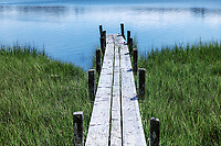 Narrow pier over salt marsh grass, Cape Cod, USA.