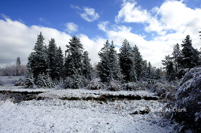 Early snow in Island Park RV campground