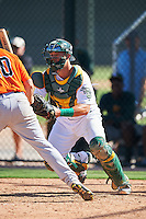 Oakland Athletics Collin Theroux (55) during an Instructional League game against the San Francisco Giants on October 5, 2016 at Fitch Park in Mesa, Arizona.  (Mike Janes/Four Seam Images)