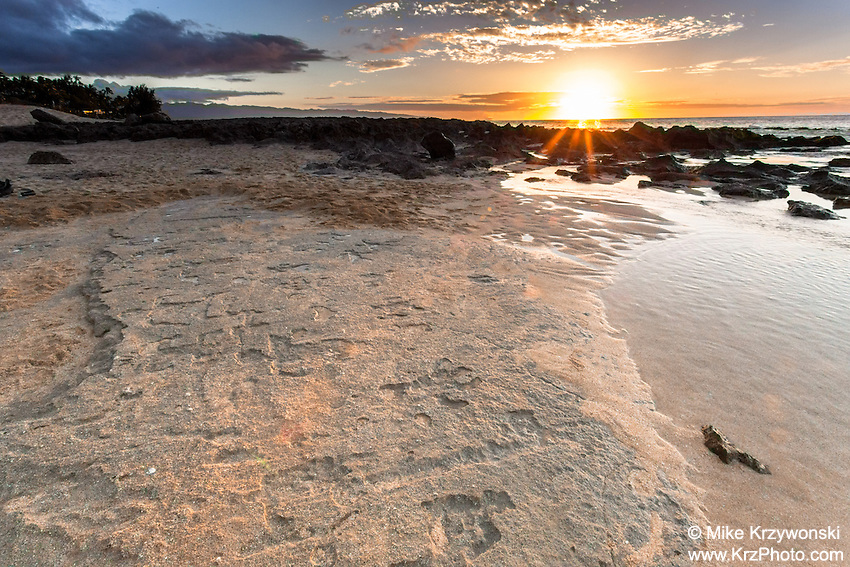Petroglyphs at the shoreline of Keiki Beach during sunset, North Shore, Oahu, Hawaii