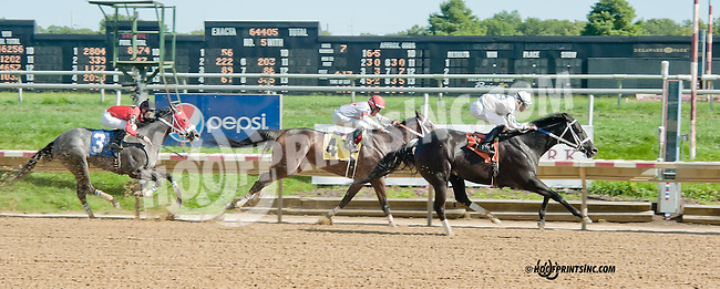 Willow Creek winning at Delaware Park on 9/4/13