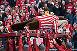 Wisconsin Badgers mascot Bucky Badger does pushups after a score during an NCAA College Big Ten Conference football game against the Iowa Hawkeyes Saturday, November 11, 2017, in Madison, Wis. The Badgers won 38-14. (Photo by David Stluka)