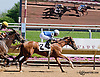 Southwest Lady winning at Delaware Park on 6/5/13