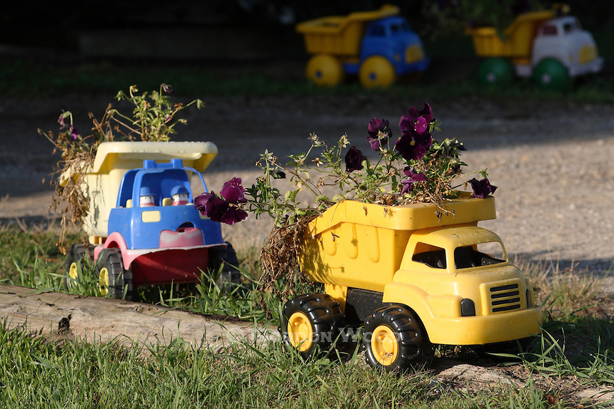 Toy Trucks used as Planters Along a Rural Driveway