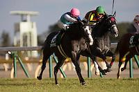 02-11-17 Queen Cup Tokyo Japan