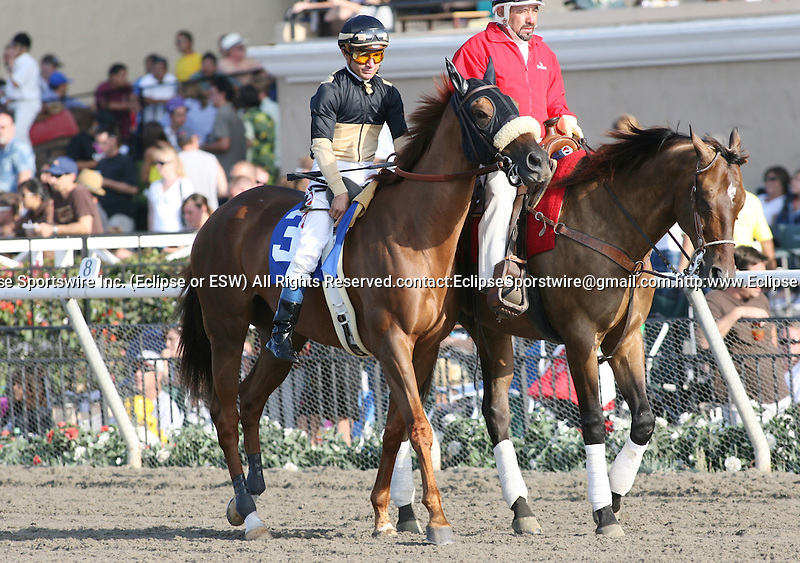16 August 2009: Magical Fantasy and Alex Solis win the John C. Mabee Stakes at Del Mar Race Track, Del Mar, CA .