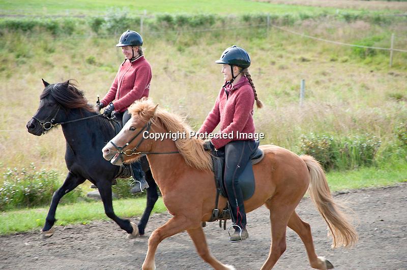 Icelandic Horse Riders