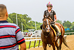 JUNE 05, 2019 :War of Will morning workouts for Belmont Stakes contenders at Belmont Park, on June 5, 2019 in Elmont, NY.  Sue Kawczynski_ESW_CSM