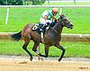Royal Honor winning at Delaware Park on 7/8/17