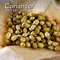 Coriander Pictures | Coriander Photos Images & Fotos