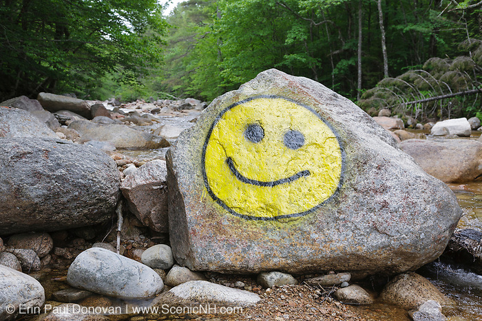 Smiley face painted on rock along the Hancock Branch in Lincoln, New Hampshire USA.