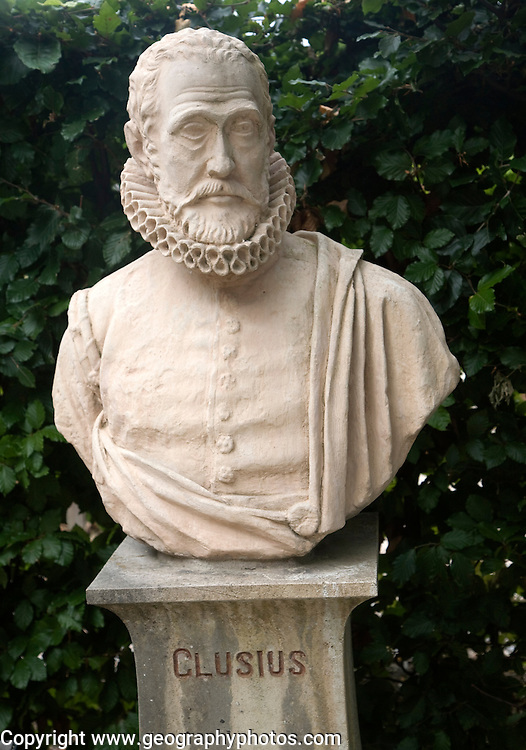 Bust of Carolus Clusius (1525-1609) in the university Botanical Gardens, Leiden, Netherlands who laid the foundations for Dutch tulip breeding bulb industry.