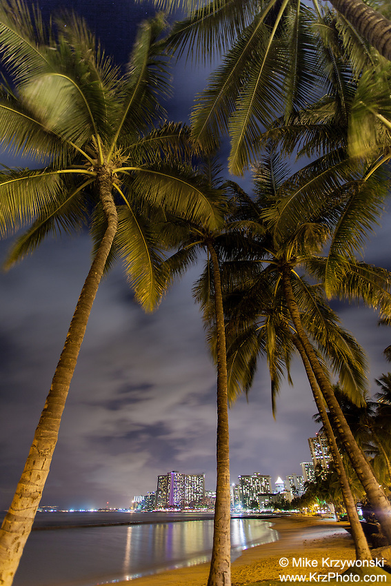 "Palm trees in front of hotels with lights reflecting off the water at night at Kuhio Beach (aka ""Walls"") in Waikiki, Oahu"
