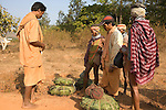 "FEBRUARY 12 & 13, 2009 : BONDA WOMEN SELL THEIR FOREST HARVEST TO TRADERS ON THE WAY TO THE MARKET IN ONUKUDELI.  BONDAS, GADABAS , TRIBALS COME FROM THE HILLS FOR THE THURSDAY MARKET IN ONUKUDELLI, SOUTH OF JEYPORE IN WESTERN ORISSA. THIS IS PART OF INDIA'S TRIBAL BELT. THE BONDA  OR BONDO ARE AN ANCIENT TRIBE OF PEOPLE NUMBERING APPROX 5000 WHO LIVE IN THE ISOLATED HILL REGION OF SOUTHWEST ORISSA, THE BONDA ARE A SCHEDULED TRIBE IN INDIA AND ARE ALSO KNOWN AS REMO (MEANING ""PEOPLE"" IN BONDA LANGUAGE). THE TRIBE IS THE OLDEST AND MOST PRIMITIVE IN MAINLAND INDIA AND THEIR CULTURE HAS LITTLE CHANGED IN OVER THOUSAND YEARS. THEIR ISOLATION AND AGGRESSION PRESERVED THEIR CULTURE DESPITE THE PRESSURE OF AN EXPENDING INDIAN POPULATION. WOMEN WEAR THICK SILVER NECKLACE BANDS AND LONG COLORFUL NECKLACES MADE OF BEADS."