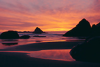 College Cove<br />