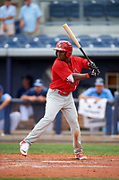 Palm Beach Cardinals second baseman Darren Seferina (12) at bat during a game against the Charlotte Stone Crabs on April 12, 2017 at Charlotte Sports Park in Port Charlotte, Florida.  Palm Beach defeated Charlotte 8-7 in ten innings.  (Mike Janes/Four Seam Images)
