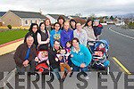 Residents in Firies  are appealing to Kerry County Council to install a pedestrian crossing in the village for the safety of children and adults. <br />