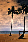 Two palm trees at sunset in Waikiki, HI