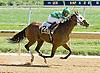 Bwana Jon winning at Delaware Park 9/15/12