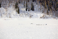 Aerial of John Bakers team running down frozen Yukon River headed to Nulato 2006 Iditarod Alaska Winter