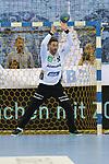 Rhein Neckar Loewe Andreas Palicka (Nr.12)  beim Spiel in der Handball Bundesliga, SG BBM Bietigheim - Rhein Neckar Loewen.<br /> <br /> Foto &copy; PIX-Sportfotos *** Foto ist honorarpflichtig! *** Auf Anfrage in hoeherer Qualitaet/Aufloesung. Belegexemplar erbeten. Veroeffentlichung ausschliesslich fuer journalistisch-publizistische Zwecke. For editorial use only.
